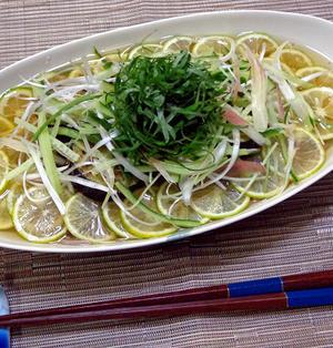 太陽の恵み!「すだち(酢橘)蕎麦」味覚と風味を夏野菜と味わう♪♪